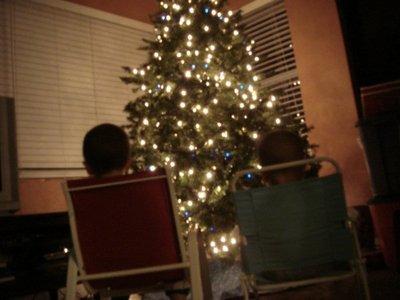 blog tree3