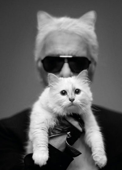 The Chanel Cat